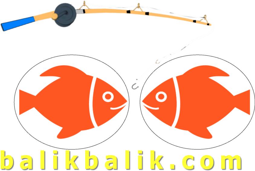 balikbalik.com